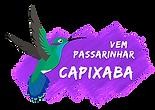 logo_vpc_large.png