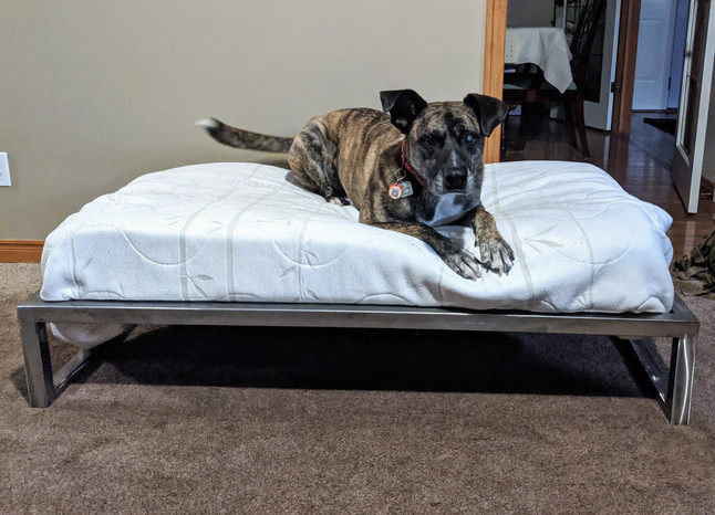 Custom Dog Bed
