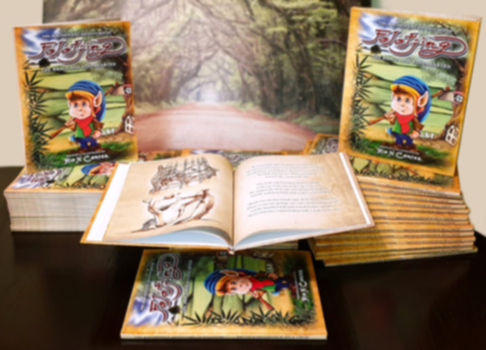 The Magnificent Adventures of Folotjing Book Display