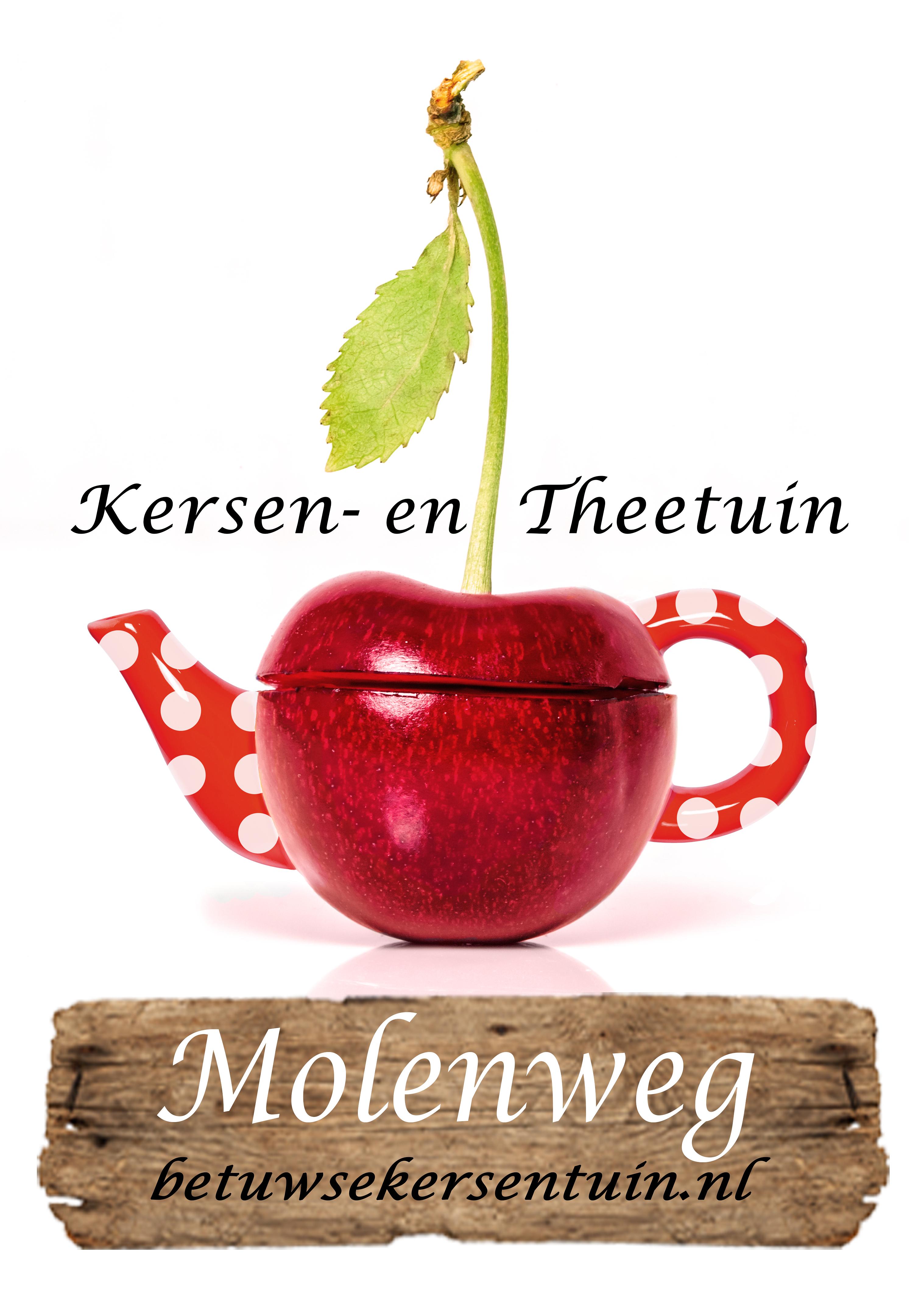 Logo Molenweg Wit - Compleet.jpg