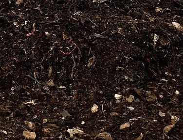 Municipal Compost.jpeg