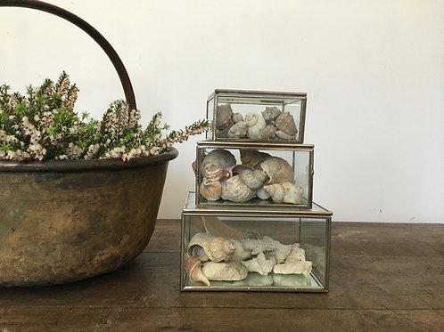 Vintage glass display boxes