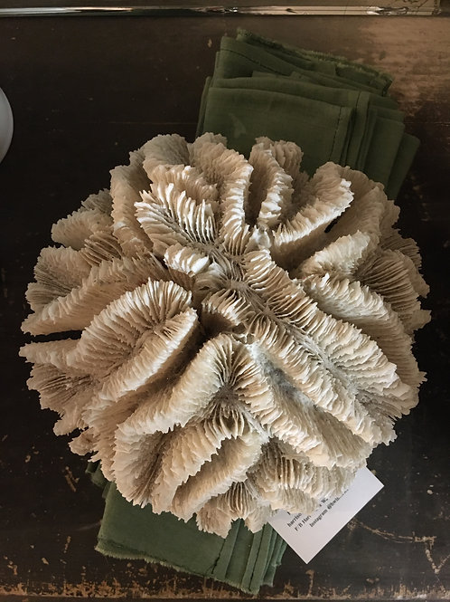Antique coral