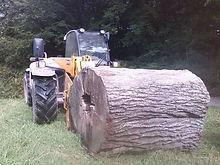 Monty Funk heritage interpretation panel installation into giant logs