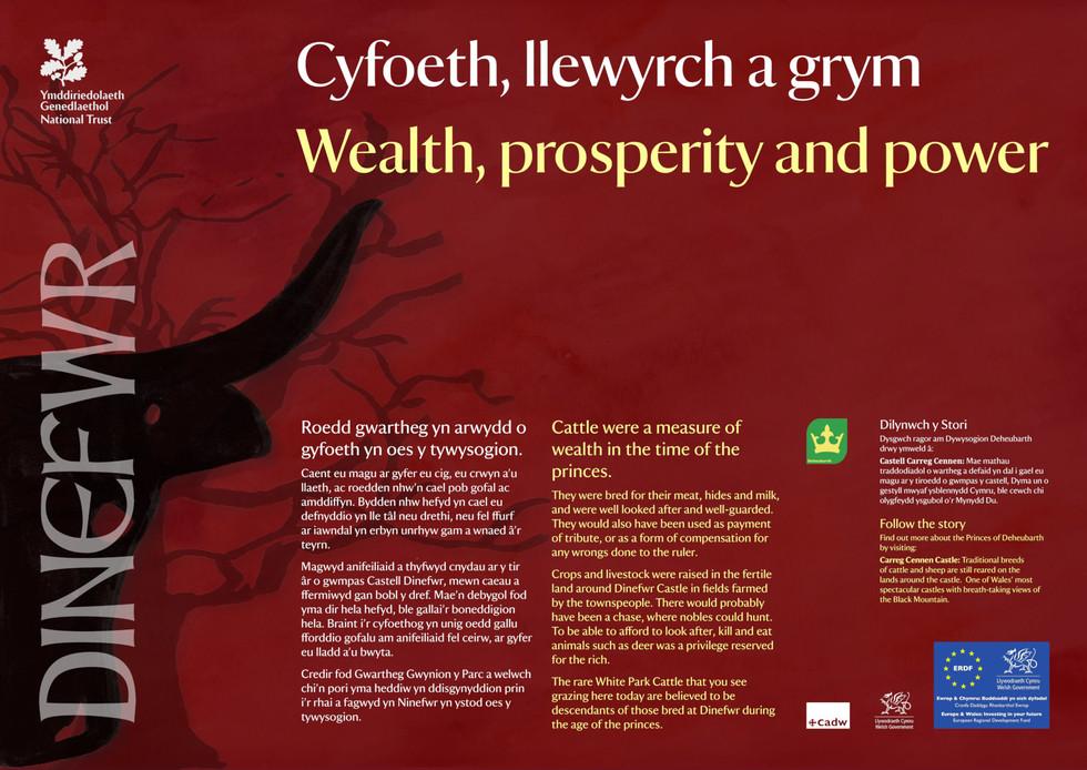 Interpretation Panel: Dinefwr Park - Power & Wealth