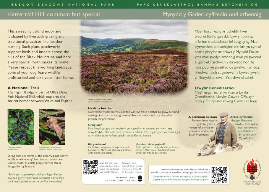 Hatterrall Hill, Pentwyn Interpretation Panel