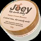Joey-3Dviewweb_edited.png