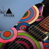 COLLABORATION WITH PRISMA GUITARS