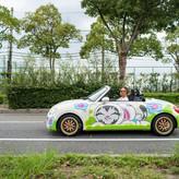 BUNNY KITTY CAR.jpg