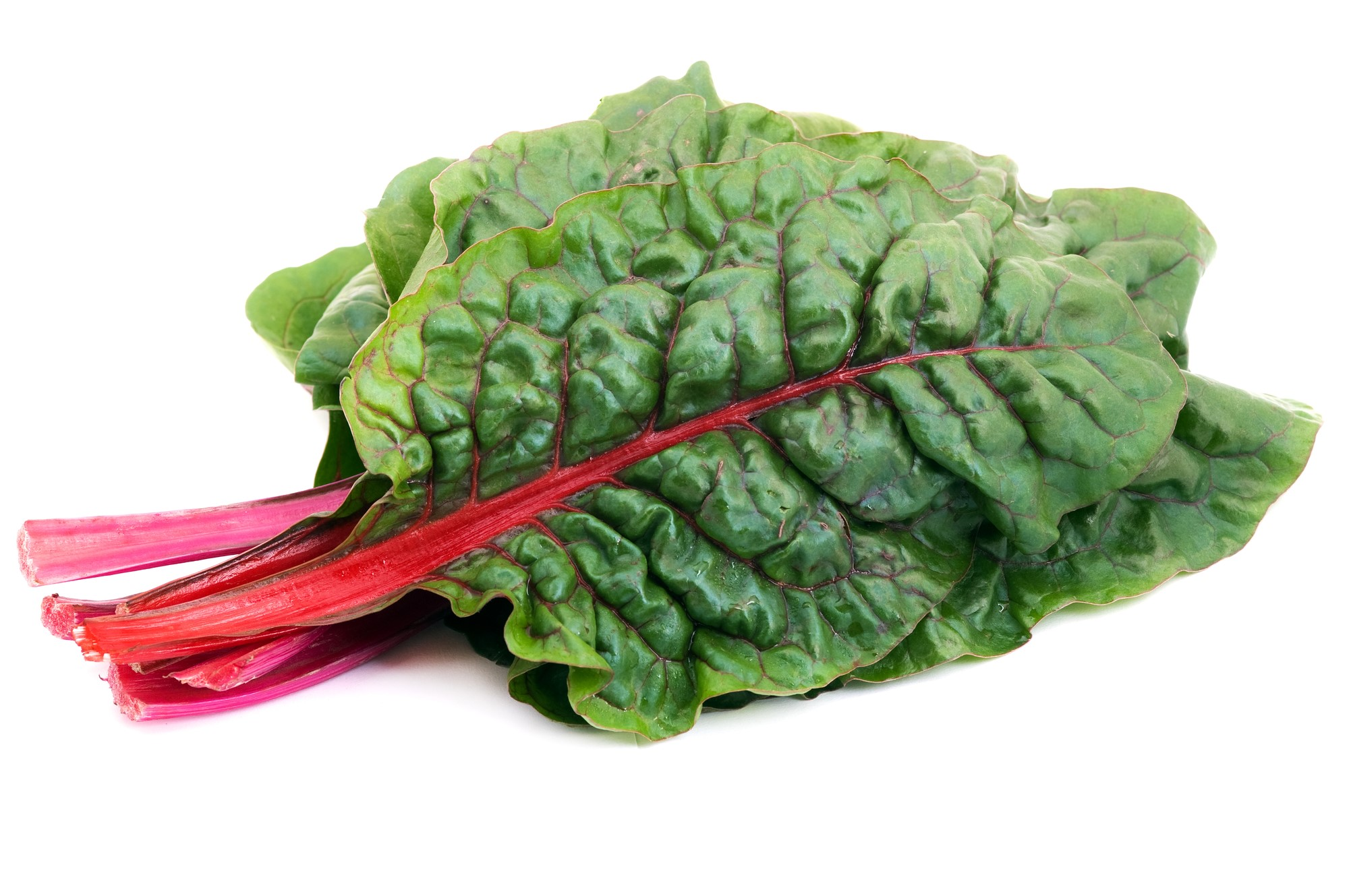 nh_l_chard_red