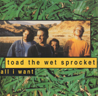Toad The Wet Sprocket - All I Want.