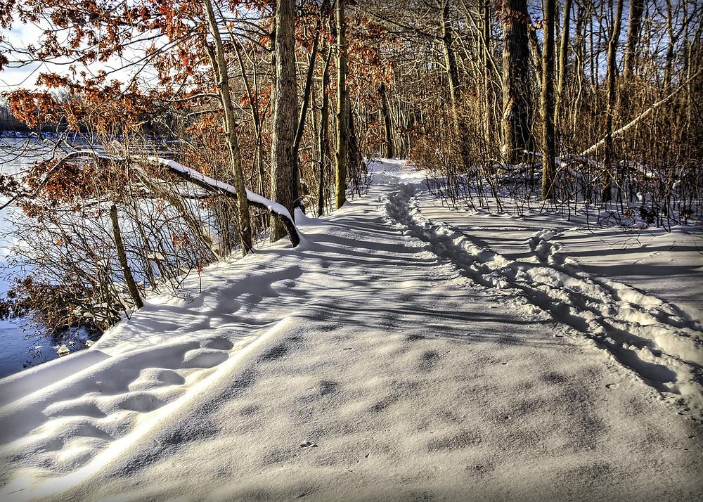 Chemin dans la neige sur lequel un psychologue pourrait faire une consultation