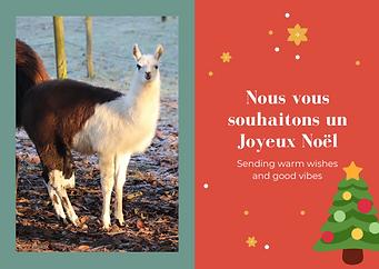 Nous vous souhaitons un Joyeux Noël.png