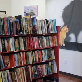 The Purr-Fect Book - Copper Cat Books Offers a Friendly, Personal Shopping Experience