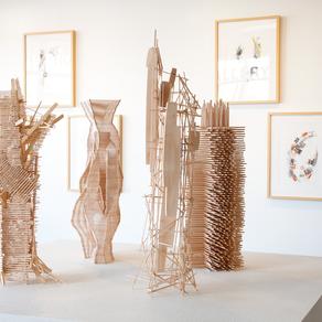 EMAV Review: 'David Baird: A Survey' at The Priscilla Fowler Gallery