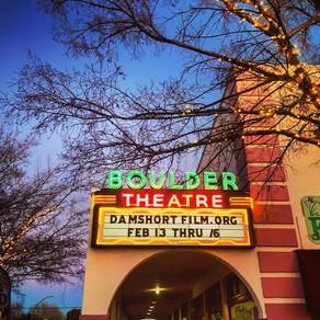 EMAV Film Review: The Dam Short Film Festival displays a diversity of work
