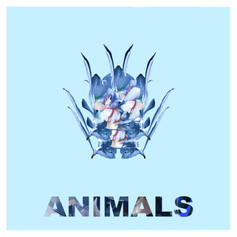 animals cover8 (1).jpg