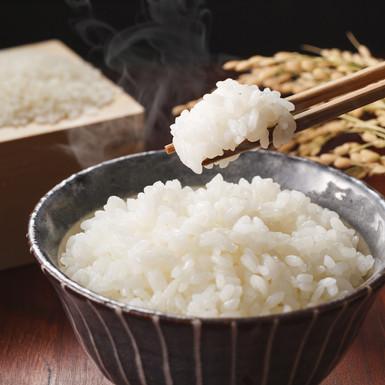 米とごはん