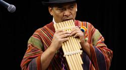 Freddy playing the sanka