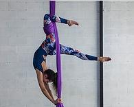 aerial silk beginner.jpg