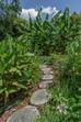 Permaculture Design- Heart to Heart Services