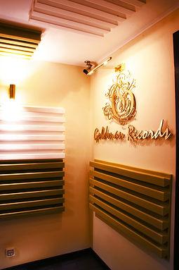 Студия звукозаписи Goldman Records - Запись инструментов, бэк вокала, запись коллективов