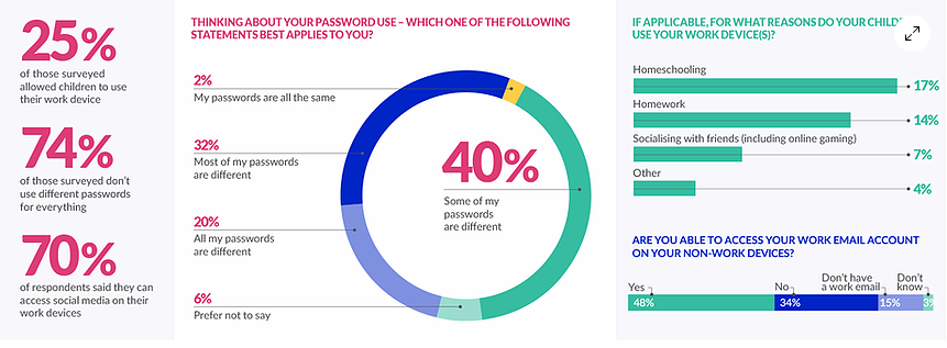 Statistics on the use of passwords and devices at home