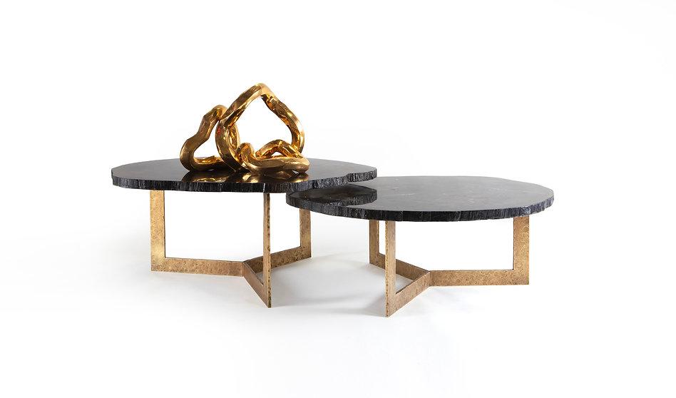 Petrified wood table Web.jpg