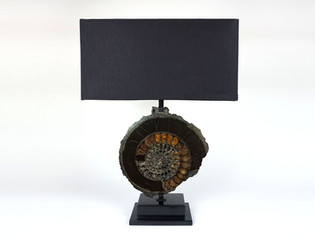 Pyritise Ammonite Lamp