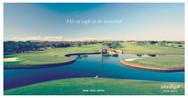 golf on safari.jpg