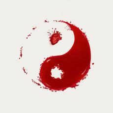 sin and yang.jpg