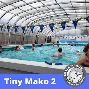 Tiny Mako 1 (1).jpg