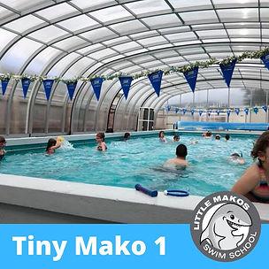 Tiny Mako 1.jpg