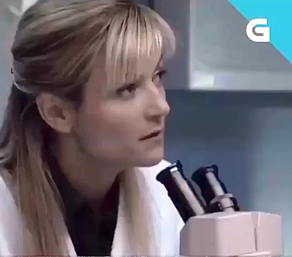 GONDAR (Serie TVG)