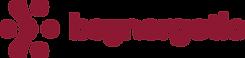 Burgundy Logo@10x.png