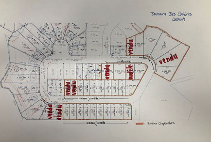 Plan terrain vendu DC mise à jour 13-07-2021_edited.jpg
