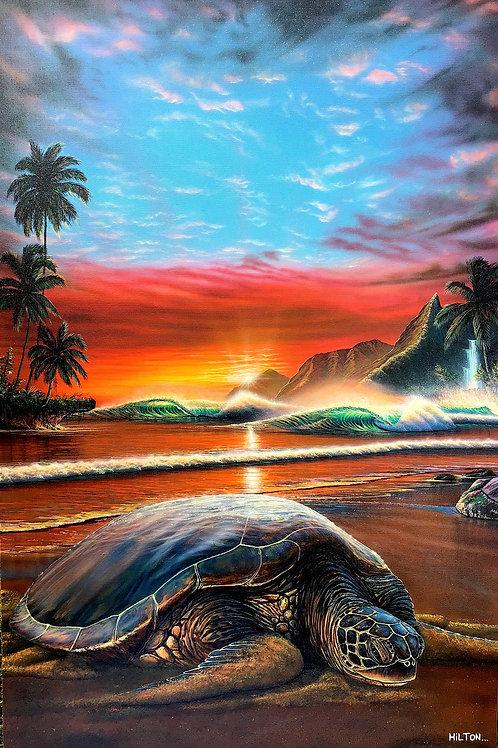 'Hidden Hawaii'