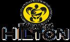 Logo com letras The Art of Hilton.png