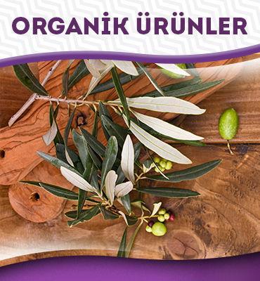 organik ürünler.jpg