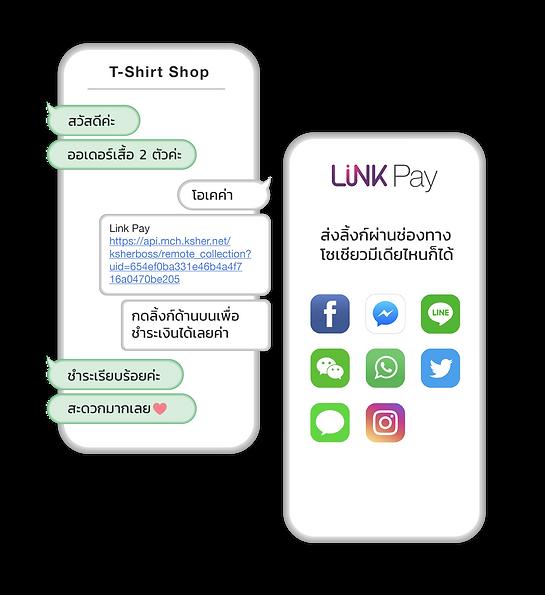 LinkPay 1