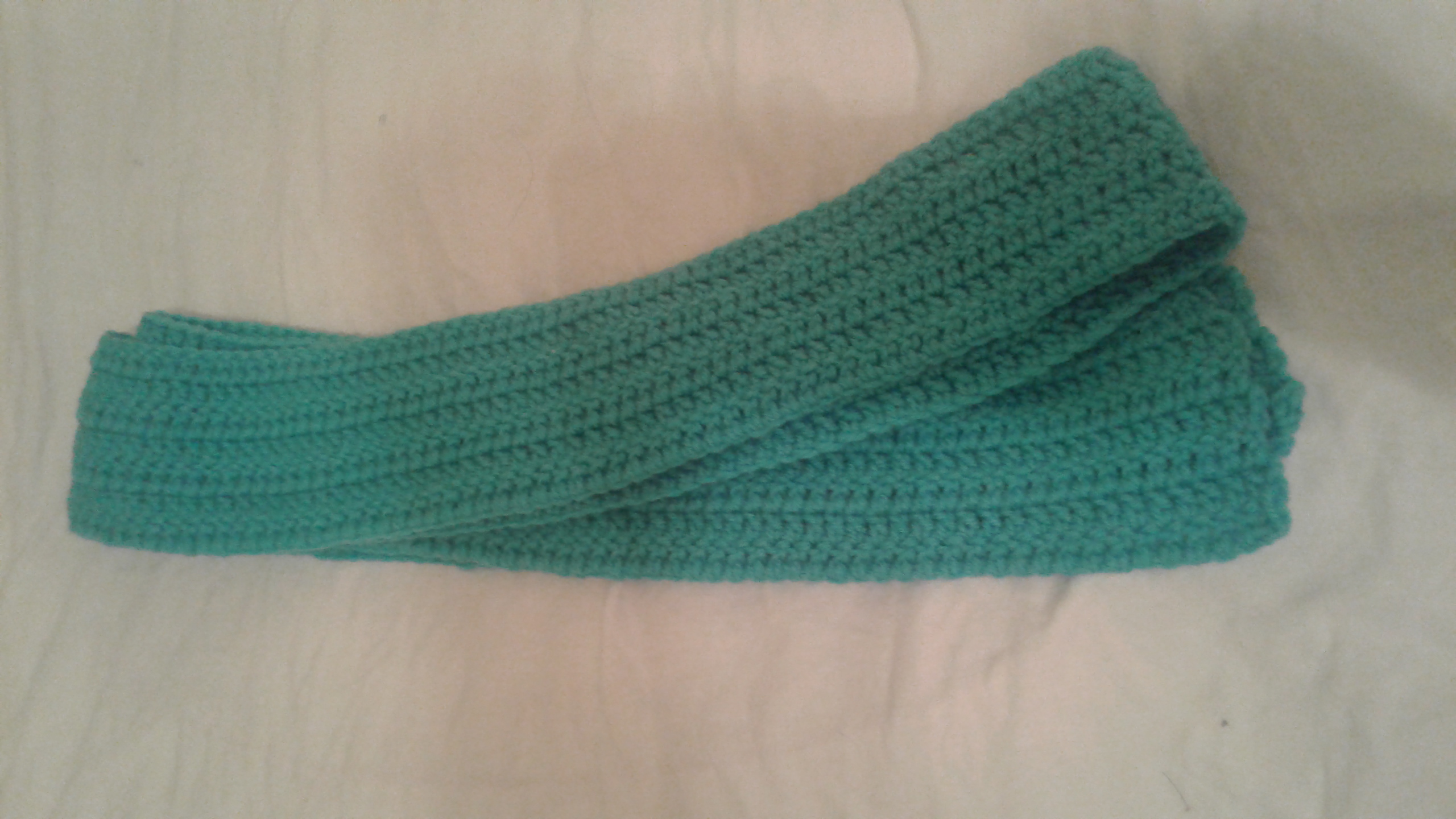 Adult Teal Scarf  - Simple Crochet