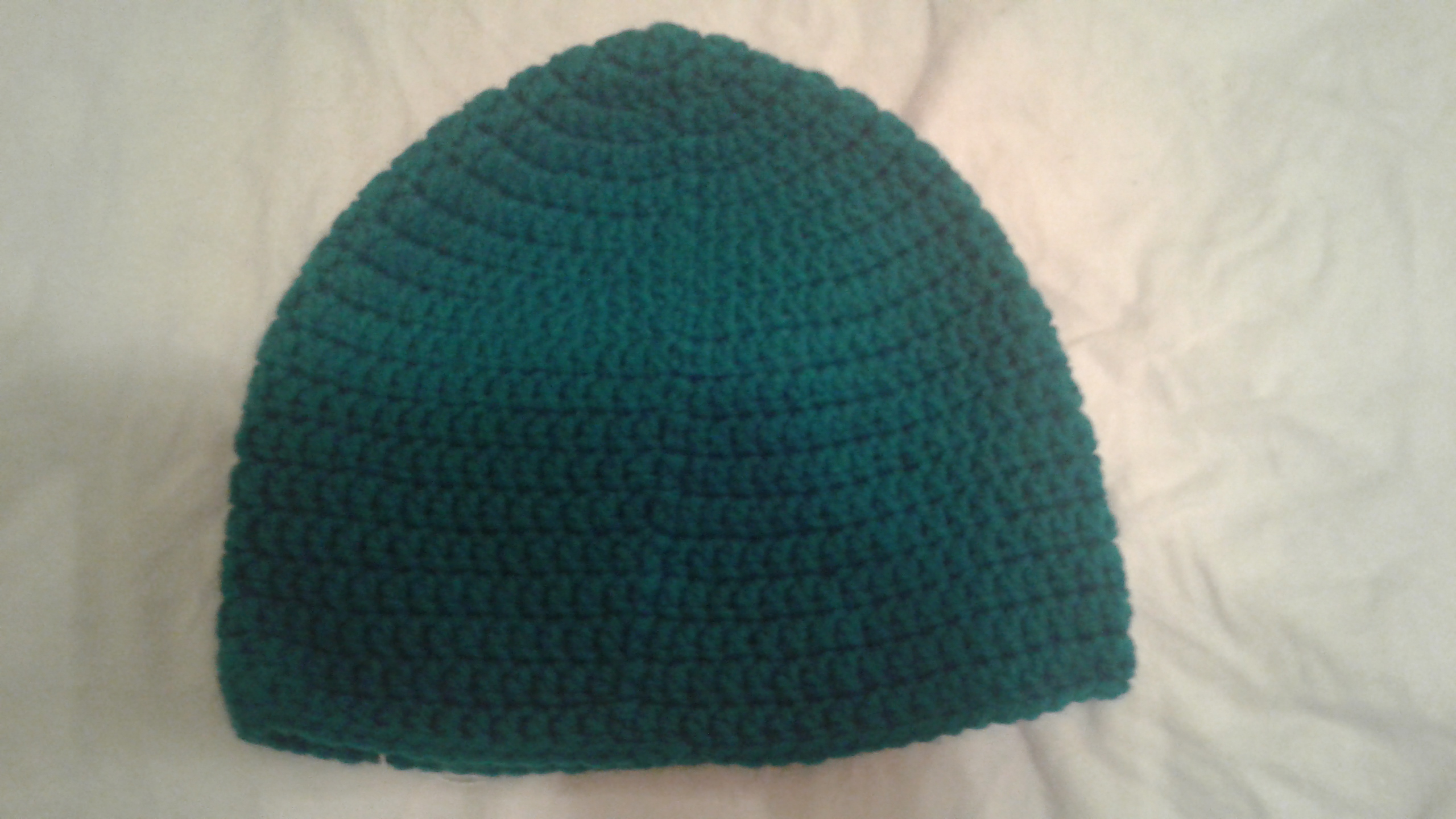Teal Green Adult Size Winter Hat - Simple Crochet