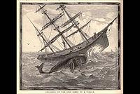 Essex whaleship.jpg