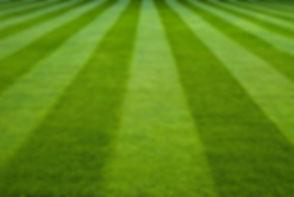 mowing stripes.jpg