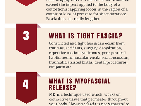 Fascia--the web of the body