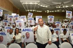 AMEL2020