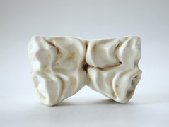 High-fired, glazed and slip-casted porcelain.  Private collection.