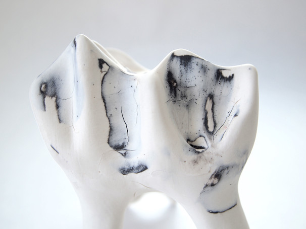 Slipcasted porcelain, oxidation, 2018.  Private collection.