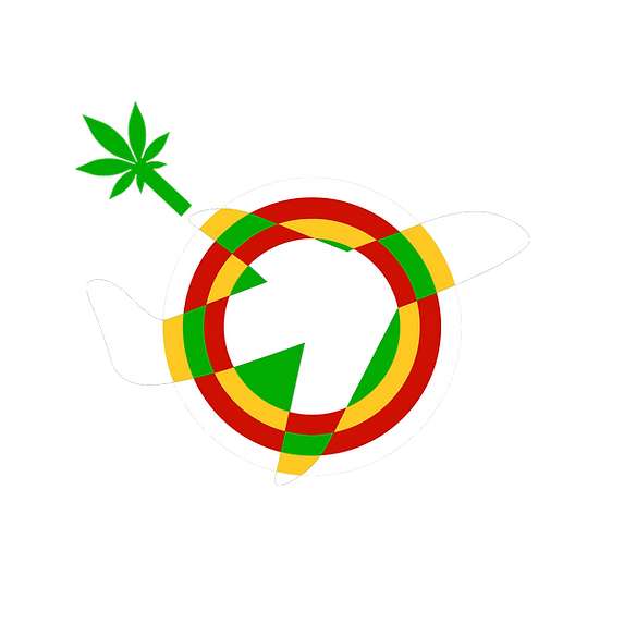 lvs-lifteddc-logo-rev.png