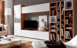 composiciones de salon de estilo moderno (3)